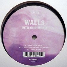 """Walls - Into Our Midst - 12"""" Vinyl"""