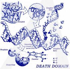 """Death Domain - Ethidium Bromide - 7"""" Vinyl"""