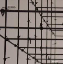 "Brandlmayr/Dafeldecker/Fennesz - Till The Old World's Blown - 12"" Vinyl"