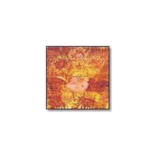 """Daniel Givens - Freedom's Myth - 12"""" Vinyl"""