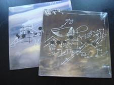 "Bjork - Biophilia Remixes Pt.3 - 12"" Vinyl"