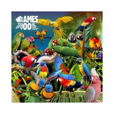 "Jameszoo - Guanyin Psittacines - 10"" Vinyl"