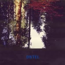 Dntel - Aimlessness - LP Vinyl+CD