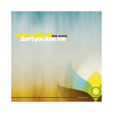 "Andy Caldwell - Don't You Love Me - 12"" Vinyl"