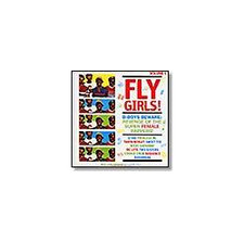 Various Artists - Fly Girls Vol 2 - 2x LP Vinyl
