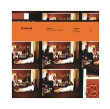 """Darkleaf - Eclectic Storm - 12"""" Vinyl"""
