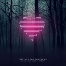 Fitz & The Tantrums - More Than Just A Dream - LP Vinyl