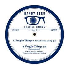 """Dandy Teru - Fragile Things - 12"""" Vinyl"""