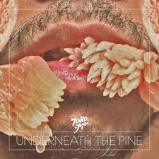 Toro Y Moi - Underneath The Pine - LP Vinyl