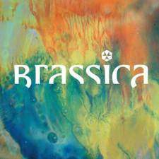 """Brassica - Hayat Zor - 12"""" Vinyl"""