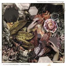 Illustration Sonore - Undisciplined Strips Of Emotions - LP Vinyl