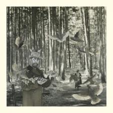"""Snow Ghosts - Sectret Garden - 12"""" Vinyl"""