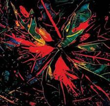 Jay Daniel - Karmatic Equations - 2x LP Vinyl