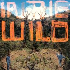 FaltyDL - In The Wild - 2x LP Vinyl