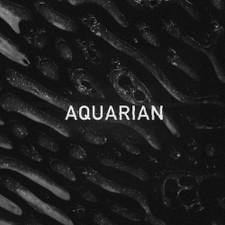 """Aquarian - s/t Ep - 12"""" Vinyl"""