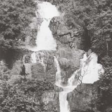 "Wrong Steps - EP02 - 12"" Vinyl"