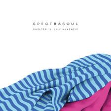 """Spectrasoul - Shelter - 12"""" Vinyl"""