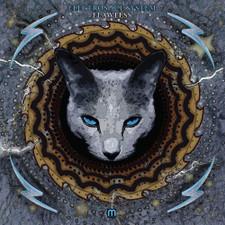 Electrosoul System - Flawless - LP Vinyl+CD
