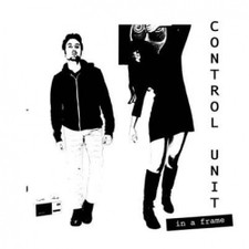 Control Unit - In a Frame - LP Vinyl