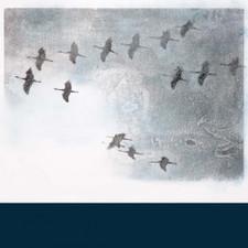 Stephan O'Malley - Gruidés - LP Vinyl