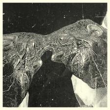 Secret Boyfriend - Memory Care Unit - LP Vinyl