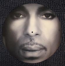 Prince - Closeup Portrait - Single Slipmat