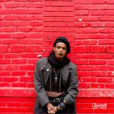 """Duane - The Brand New Dog - 12"""" Vinyl"""