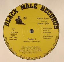 "Trojan Horse - Psalm 1 - 12"" Vinyl"