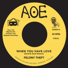 """Felony Theft - When You Have Love / Run For Cover - 7"""" Vinyl"""