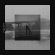 Braille - Mute Swan - LP Vinyl