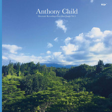 Anthony Child - Electronic Recordings From Maui Jungle Vol. 2 - 2x LP Vinyl
