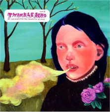 Casiotone For The Painfully Alone - Twinkle Echo - LP Vinyl