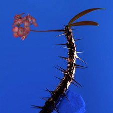 "Flume - Skin Companion Ep II - 12"" Vinyl"