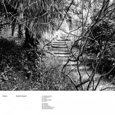 Echium - Synthetic Space - LP Vinyl