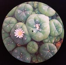 Peyote - Buttons - Single Slipmat