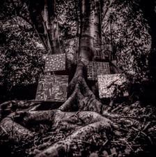 "Kamasi Washington - Harmony Of Difference - 12"" Vinyl"