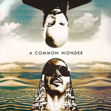 Common vs. Stevie Wonder - A Common Wonder - 2x LP Vinyl