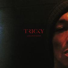 Tricky - Ununiform - LP Vinyl