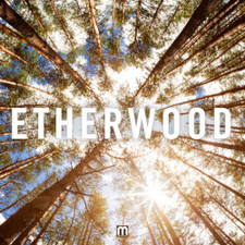 Etherwood - Etherwood - LP Vinyl+CD
