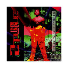 2Pac - Strictly 4 My N.I.G.G.A.Z. - 2x LP Vinyl