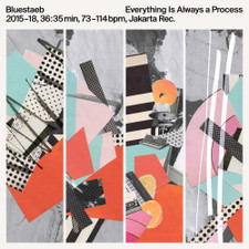 Bluestaeb - Everything Is Always A Process - LP Vinyl