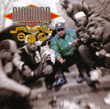 Diamond D & The Psychotic Neurotics - Stunts, Blunts & Hip Hop - 2x LP Vinyl