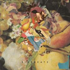 Binkbeats - P.M.P.U. Pt. 2 - LP Vinyl