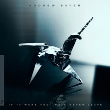 Andrew Bayer - If It Were You, We'd Never Leave - 2x LP Vinyl