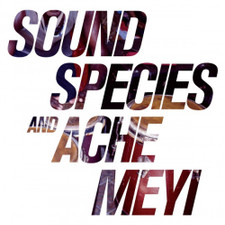 Soundspecies & Ache Meyi - Soundspecies & Ache Meyi - 2x LP Vinyl