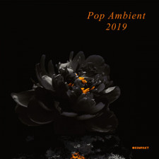 Various Artists - Pop Ambient 2019 - 2x LP Vinyl