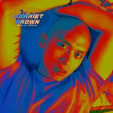 Harriet Brown - Mall Of Fortune - LP Vinyl
