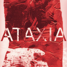 Rian Treanor - Ataxia - 2x LP Vinyl