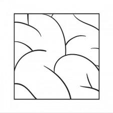 Intellexual - Intellexual - LP Vinyl