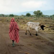 """Stalawa - Stalawa In East Africa RSD - 12"""" Vinyl"""